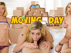 Haley Reed in Moving Day - WankzVR